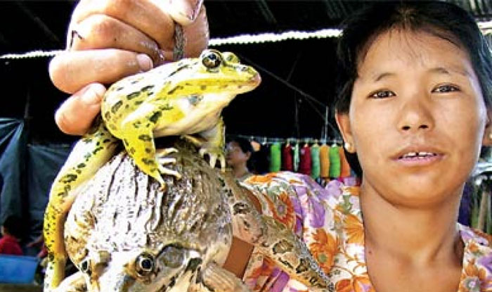 नगालैंड का 'भोजन', जो 'चिकन प्रेमियों' के भी होश उड़ा दे!